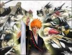 Bleach_Anime_Pictures_233_.jpg