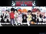Bleach_Anime_Pictures_335_.jpg