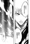 Bleach_-_Isane_Kotetsu_4th_Division_Vice-Captain_Pictures_10_.jpg