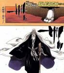 Bleach_-_Yamamoto_Genryuusai_Shigekuni_1st_Division_Captain_Pictures_14_.jpg